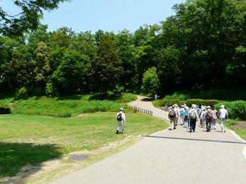 古墳公園2