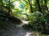 滝坂の道1