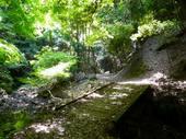 滝坂の道2