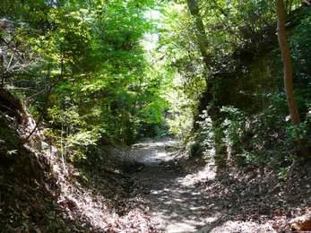 滝坂の道3