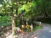 滝坂の道4