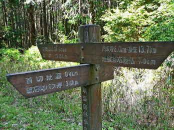 滝坂の道?それとも春日山頂上へ?どちらにしますか?