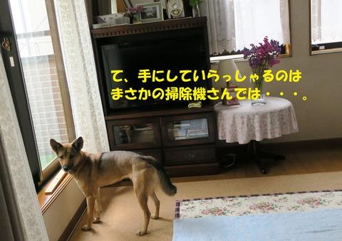 IMG_4324 文字