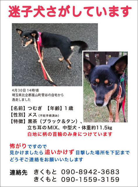 WEB_tsumugi.jpeg