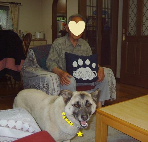 ハピ2006春(4) 050T