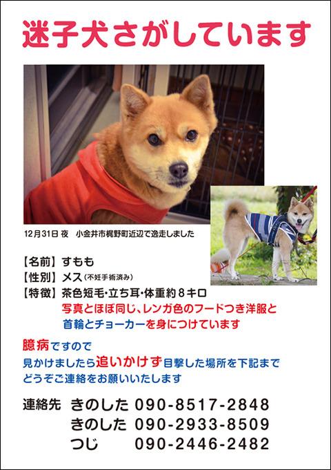 web_sumomo