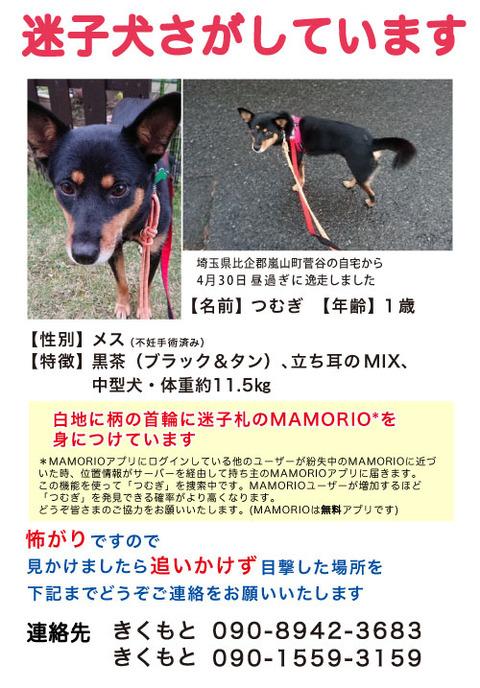 web_tsumugi_mamorio