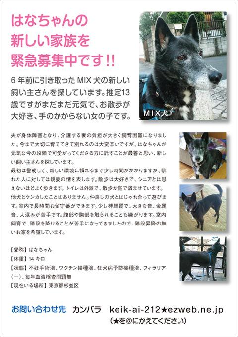 hanako_web