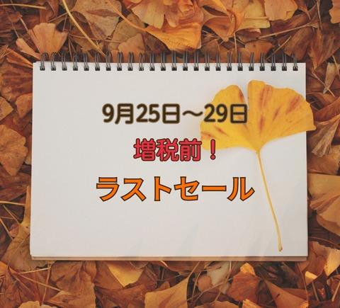 19-09-24-17-50-44-628_deco