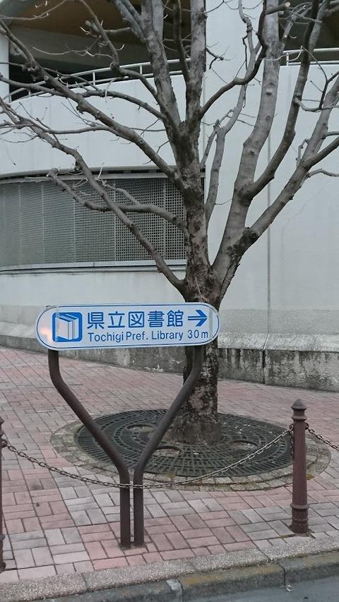 栃木県立図書館その1