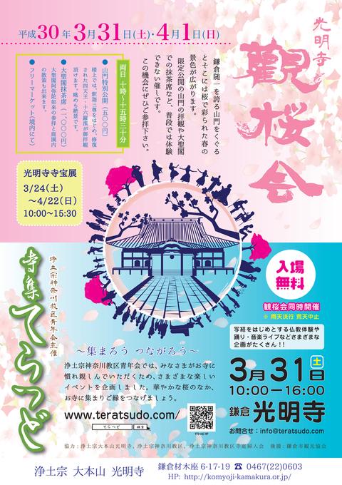 2018_flyer01