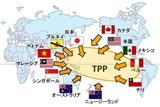 2010年から交渉が始まっているTPP