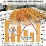 うなぎ豊漁を報じる産経新聞