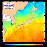 11月24日の海水温