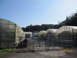 石井水産入口付近