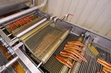 加工ライン生産する鰻蒲焼