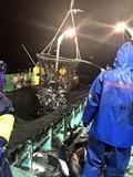 函館の定置網漁