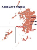 九州の採捕地