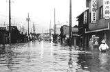 静岡市の駅南では腰までの水が街を覆った