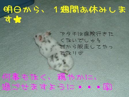 b7a0649b.jpg