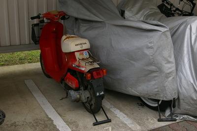 IMGP2809