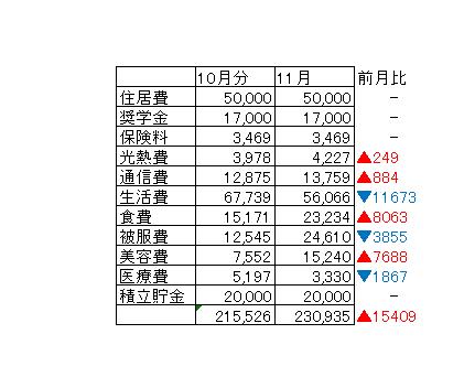 【えみLOG】11月の家計簿報告