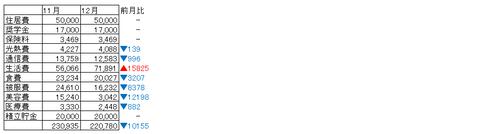 【12月家計簿&2017年振り返り】独身アラサー女の2017年貯蓄額はいかに!