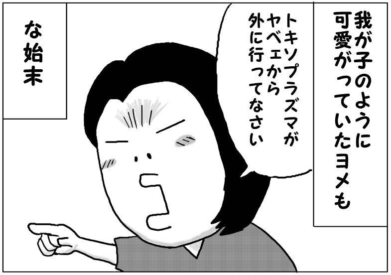 ニャ崩壊⑤