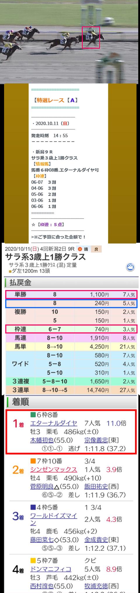 10月11日新潟9R