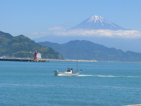 富士と渡し船