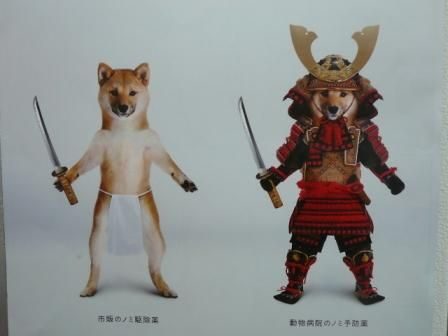 和犬男児20110214