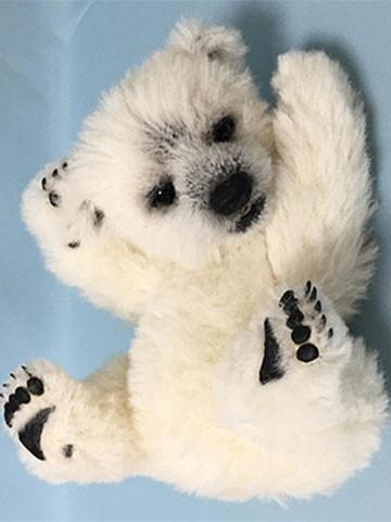 teddybear-main