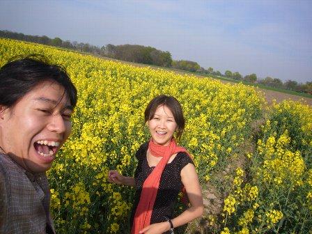 憧れの菜の花畑