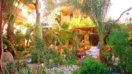 アモンホテルの庭