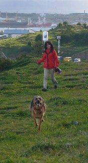 トルーチャの散歩