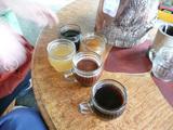 コーヒー農場1