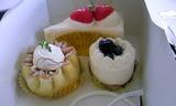 モニカのケーキ