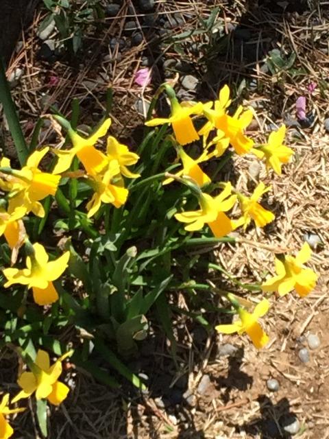 春満載 (5)