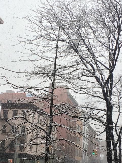 3月の雪 (2)