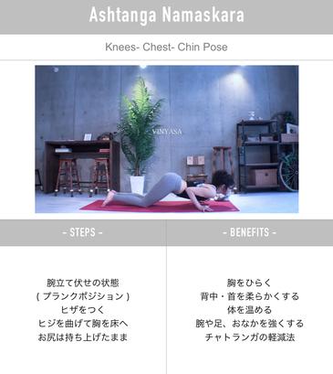 homeyoga_pose30_vinyasa_04
