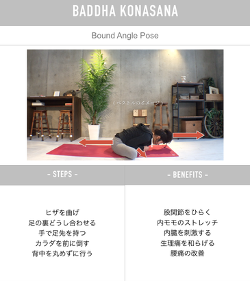 homeyoga_pose30_boudanglepose