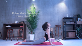 homeyoga_pose30_updog