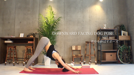 homeyoga_pose4_downdog_01