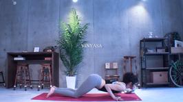 homeyoga_pose30_vinyasa_01
