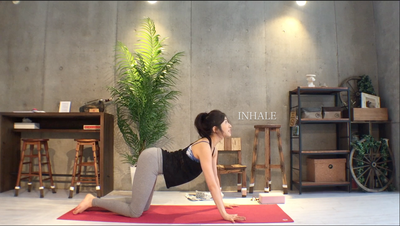 homeyoga_pose30_17_catcow02