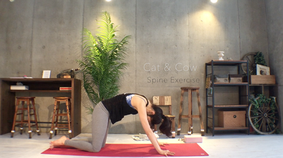 homeyoga_pose30_17_catcow