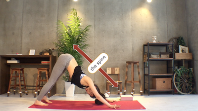 homeyoga_pose4_downdog_02