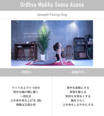 homeyoga_pose30_updog_02