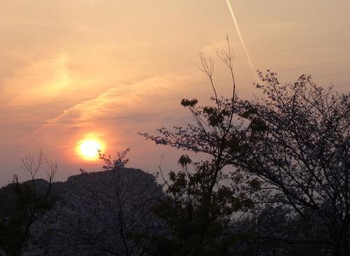 20150331 さくらと夕日