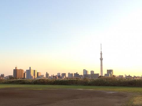 東京荒川マラソンの開催中止に関する考察